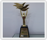 Awarded The Best Partner for Indian Sub Continent 2013